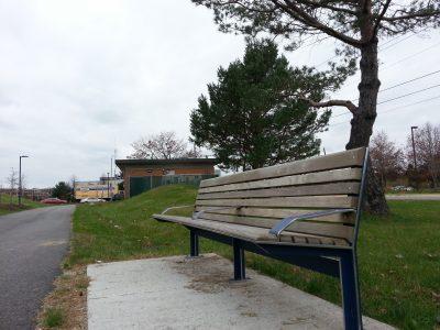 Bayside bench  Boyd St 2012