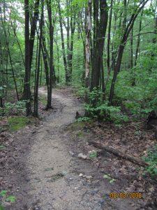 FRS path