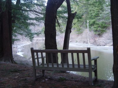 KWH Bench, Monro, Stroudwater Trail