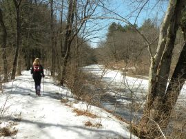 Stroudwater Trail<em>Photo by Carey Kish</em>